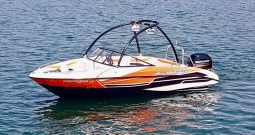 New Sunsport 1950 Sport 115HP